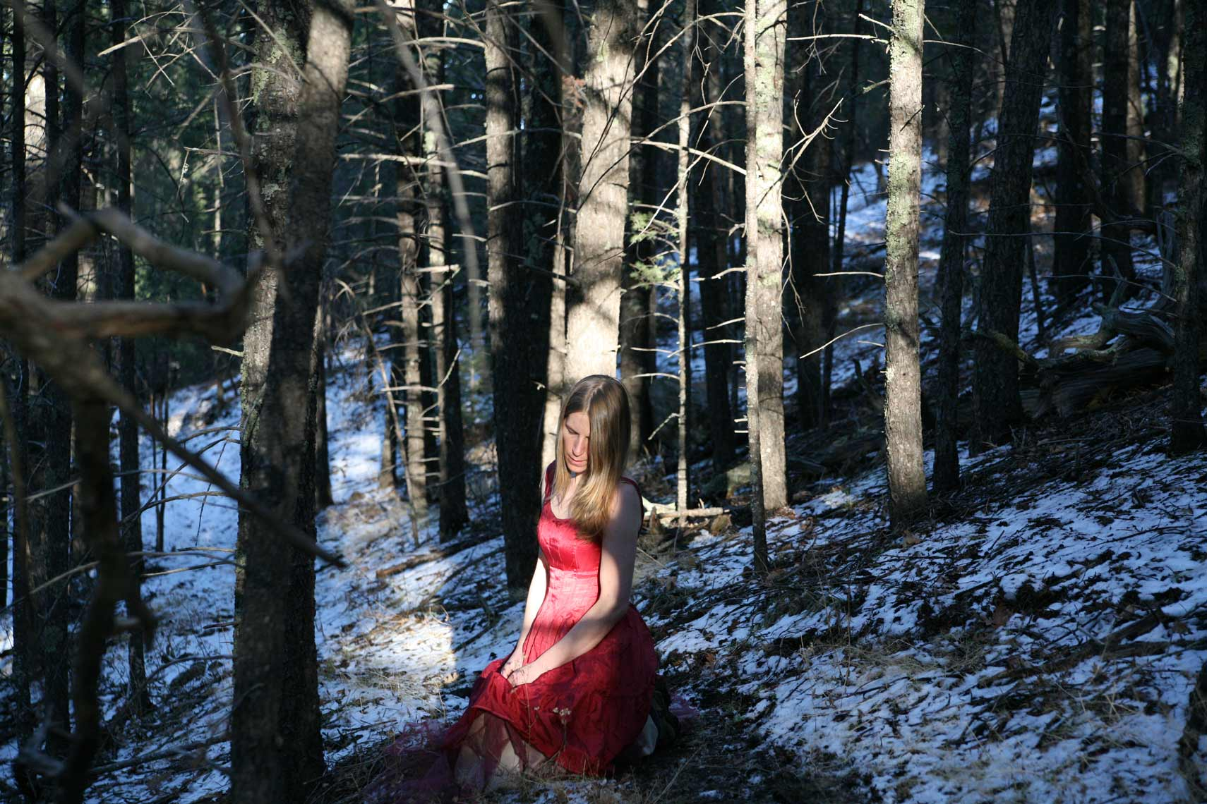 Red Dress Series